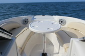 19 ft. Sea Ray Boats 190 Sundeck  Bow Rider Boat Rental Chicago Image 6