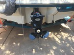 19 ft. Sea Ray Boats 185 Bow Rider Runabout Boat Rental Phoenix Image 9