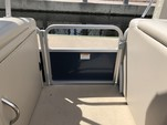 23 ft. Sun Chaser 2300 Pontoon Boat Rental Tampa Image 21