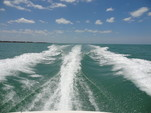 25 ft. Chaparral Boats 250 Suncoast Bow Rider Boat Rental Fort Myers Image 11