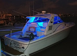 34 ft. Sea Ray Boats 330 Express Cruiser Cruiser Boat Rental Miami Image 15