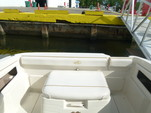 22 ft. Sea Ray Boats 215 Express Cruiser Express Cruiser Boat Rental Miami Image 19