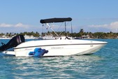 16 ft. Bayliner Element 4-S Mercury  Cruiser Boat Rental Miami Image 8