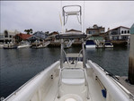 31 ft. Chris Craft 31 CC Center Console Boat Rental San Diego Image 2
