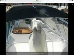 27 ft. World Cat Boats 270SD Sport Deck w/2-225HP Bow Rider Boat Rental Alabama GC Image 1
