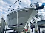 28 ft. Sea Ray Boats 260 Sundancer Express Cruiser Boat Rental Tampa Image 15