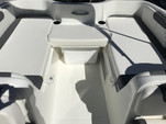 18 ft. Bayliner Element F18 4-S Mercury  Deck Boat Boat Rental Orlando-Lakeland Image 7