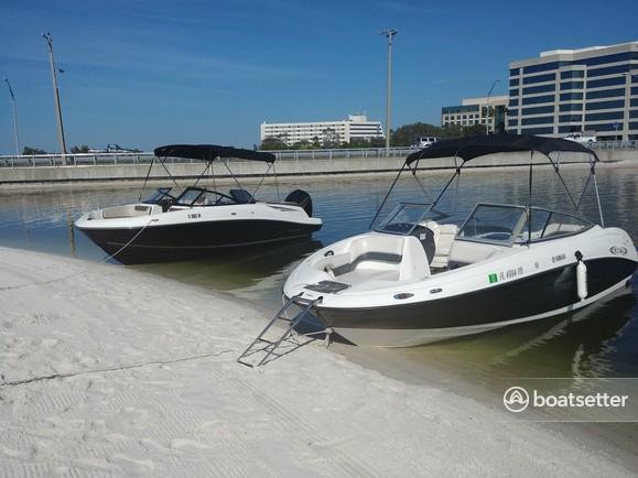 Rent a 2017 20 ft  Bayliner VR5 BR in Holiday, FL on Boatsetter
