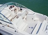 28 ft. Sea Ray Boats 260 Sundancer Cruiser Boat Rental Washington DC Image 5