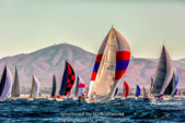 40 ft. Trip 40 Cruiser Racer Boat Rental San Diego Image 5