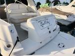 33 ft. Sea Ray Boats 300 Sundancer Cruiser Boat Rental Chicago Image 9