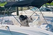 20 ft. Chaparral Boats 18' Sport Other Boat Rental West FL Panhandle Image 3