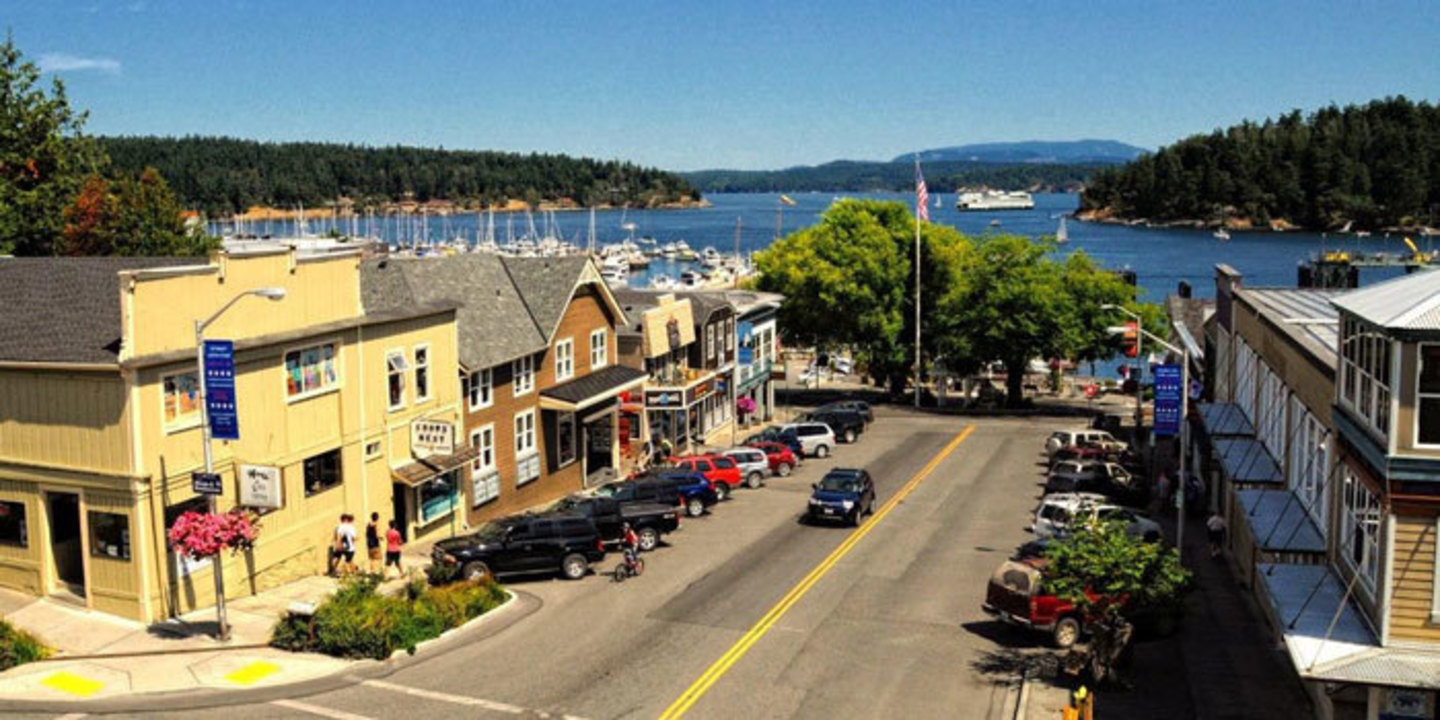 San Juan Island Marina For Sale