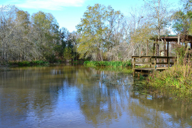 Armand Bayou Nature Center K