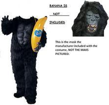 Gorilla1660_thumb200
