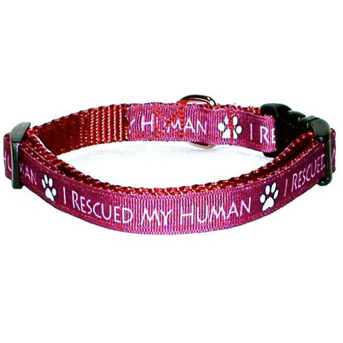 Human Collars Related Keywords - Human Collars Long Tail ...