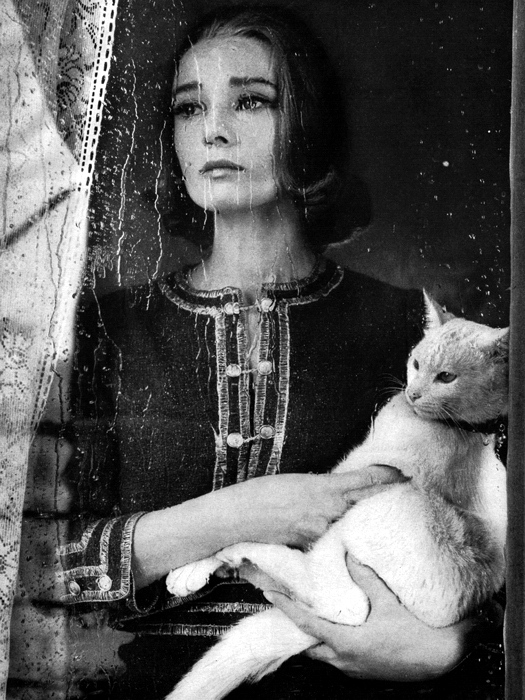 Audrey Hepburn Actress Cat Window Rain Beautiful Retro 24x18 Wall ...