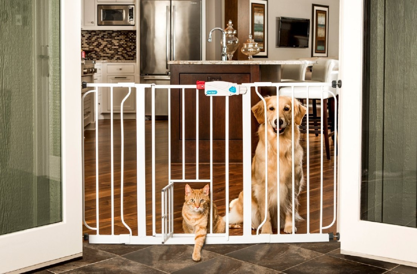 Dog Gate With Cat Door Amazon