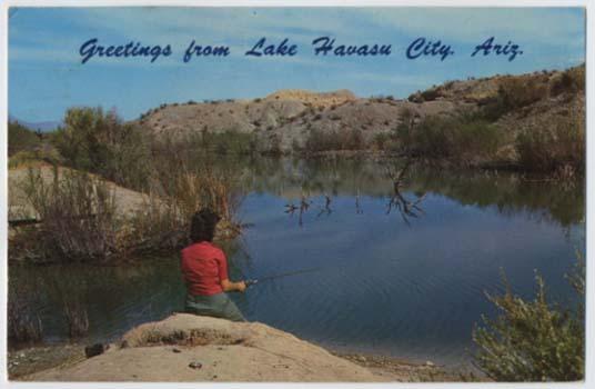 Woman bass fishing lagoon lake havasu city az postcard for Bass fishing in colorado