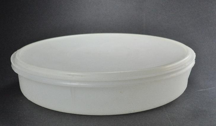 Vintage Tupperware 12 Inch Pie Taker Keeper Round Sheer 242