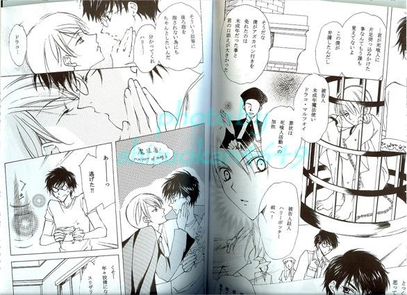 harry potter doujinshi: