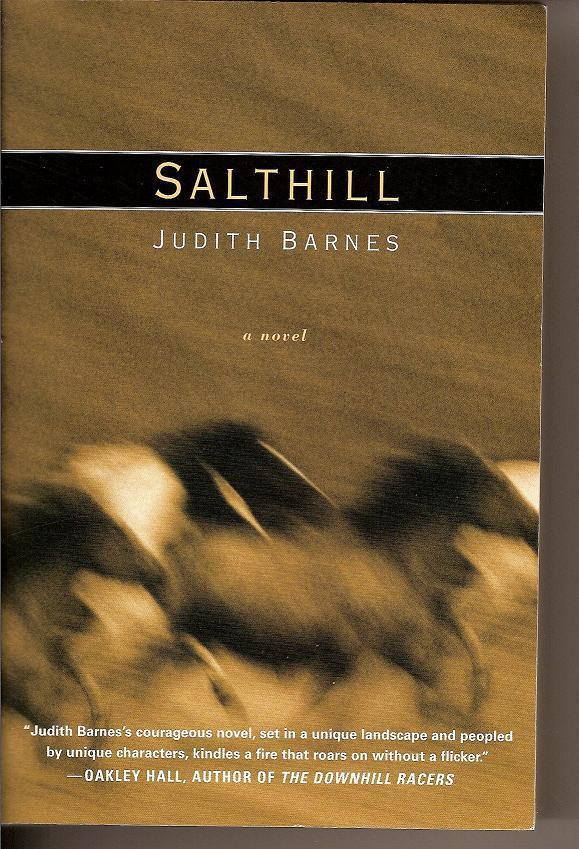 Image 0 of Salthill A Novel by Judith Barnes PB 2003