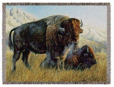 A Bison Parser 60x50 Buffalo W...
