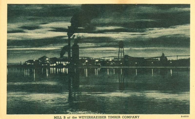 Mill B of the Weyerhaeuser Timber Company, Everett, Washington unused Postcard