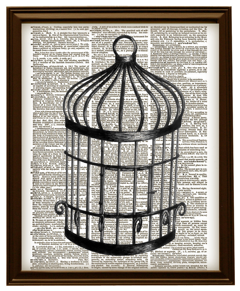 Antique bird cage drawing - photo#8