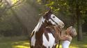 Horse_0094