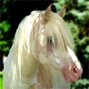 Pony_thumb128