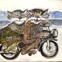 Biker_cats_thumb128
