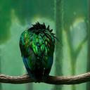 Greenbird_ipad_thumb128