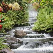 Waterfall_thumb175
