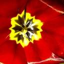 Img-20110515-00304_thumb128