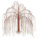 Weeping-willow-tree-pictures_thumb128