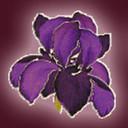 Logo_-_purple_thumb128