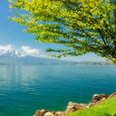 Spring-scenery-6392-6668-hd-wallpapers_thumb128