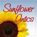 Sunflower_antics_avatar_250_x_250_2016_thumb128