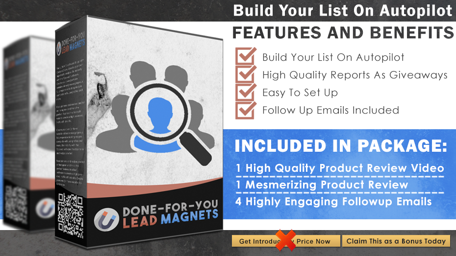 Done+For+You+Lead+Magnet+Info+Graphics
