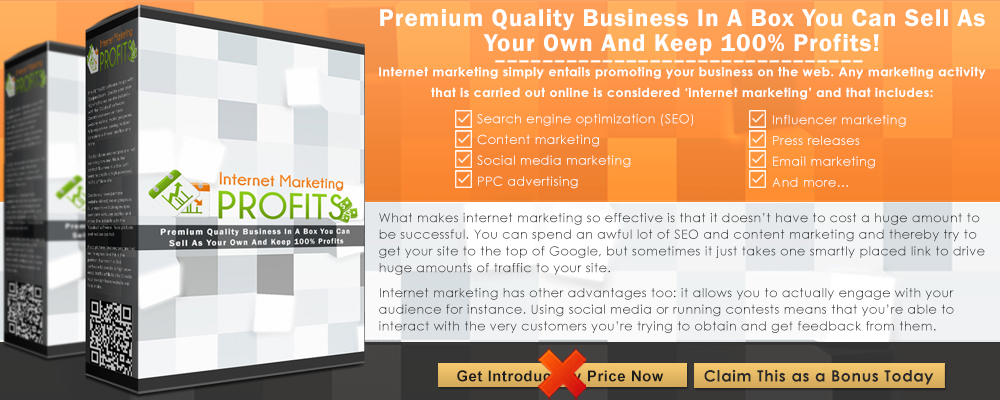 Internet+Marketing+Profits+Infographic