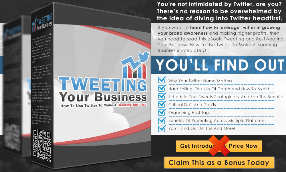 Tweeting%2BYour%2BBusiness%2BInfo%2BGraphics