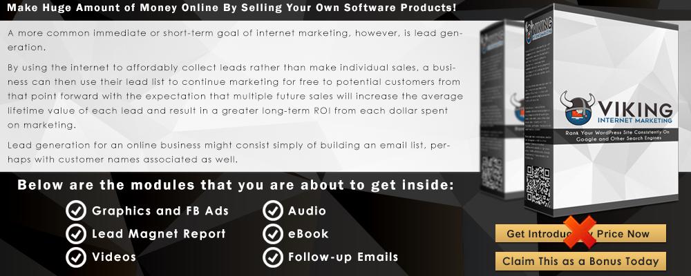 Viking+Internet+Marketing+Infographic