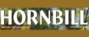 Hornbill Advertisement