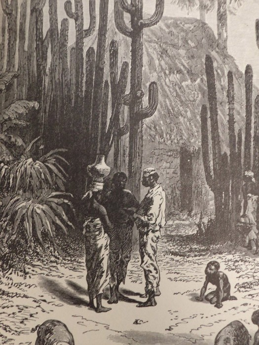 Image for A Zigzag [Zig-Zag] Journey in the Sunny South; or, Wonder Tales of Early American History. A Visit to the Scenes and Associations of the Early American Settlements in the Southern States and the West Indies.