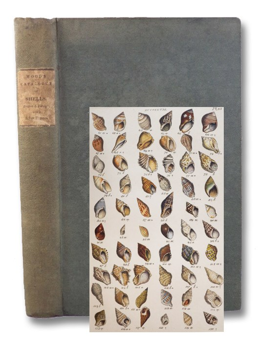Index Testaceologicus; or A Catalogue of Shells, British and Foreign, Arranged According to the Linnaean System; with the Latin and English Names, References to Authors, and Places Where Found. Illustrated with 2300 Figures., Wood, W. [William]
