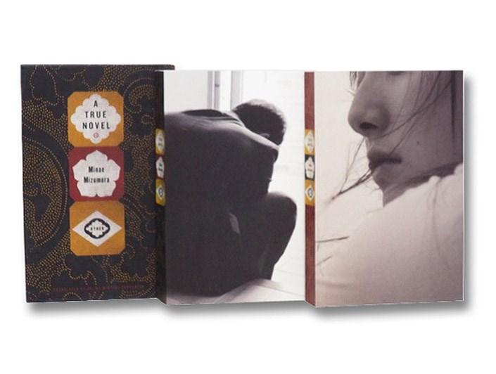 A True Novel, Mizumura, Minae; Carpenter, Juliet Winters