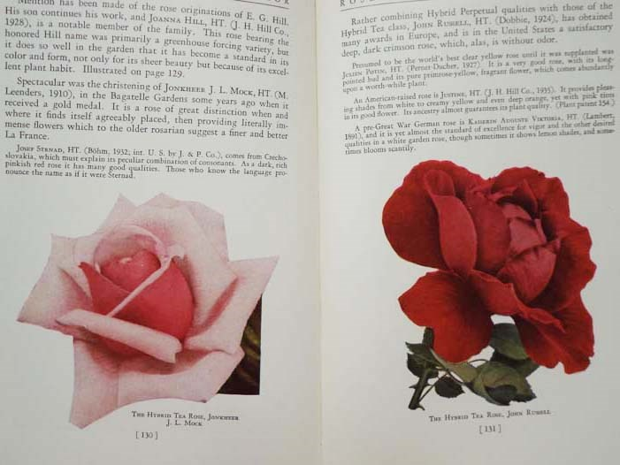 Image for Roses of the World in Color