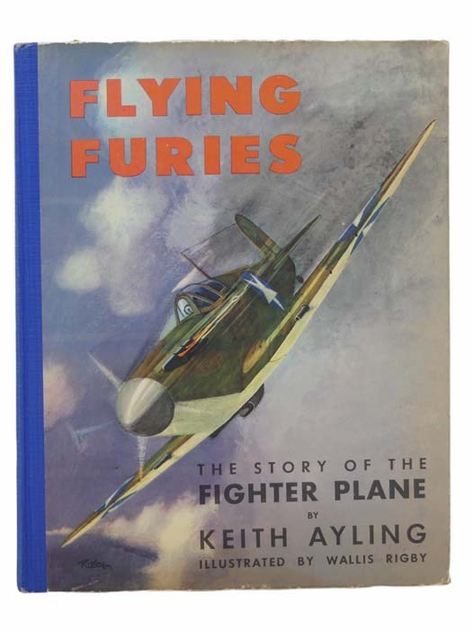 Image for Flying Furies [The Story of the Fighter Plane]