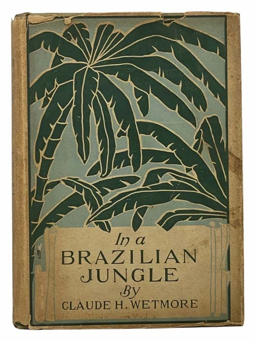 Image for In a Brazilian Jungle: Being a Story of Adventure, with an Insight into Brazilian Life and Industries